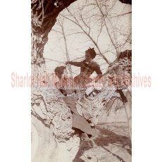 Sharlot Hall and woman in tree