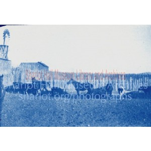 Horses and cows in front of fence with water mill at Orchard Ranch