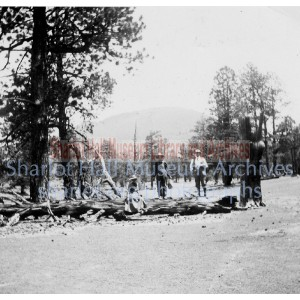 Sharlot Hall, S.E. Hewis & James Hall on log near Sunset Crater
